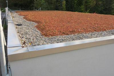 Beton und Alu-Dachrand zu Garage